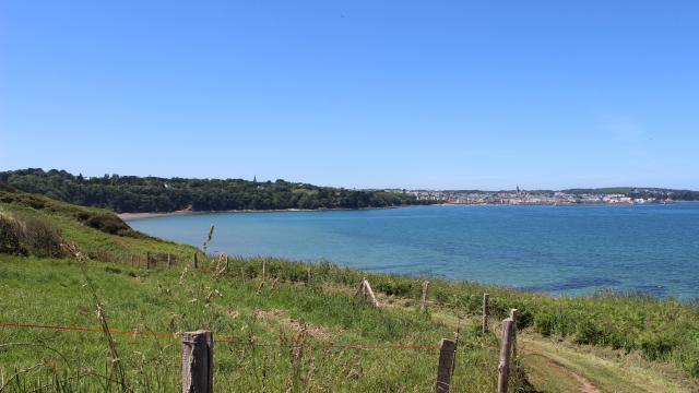 Vue sur le port du Rosmeur depuis le GR34