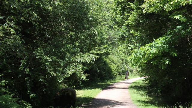 Promenade Paul Edouard Paulet - Voie verte