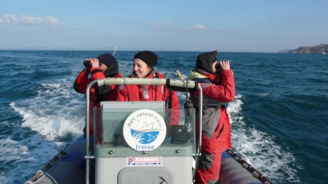 Agents de terrain lors d'une mission de comptage d'oiseaux hivernants en baie de Douarnenez