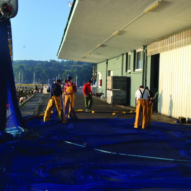 Pêcheurs démelant leurs filets