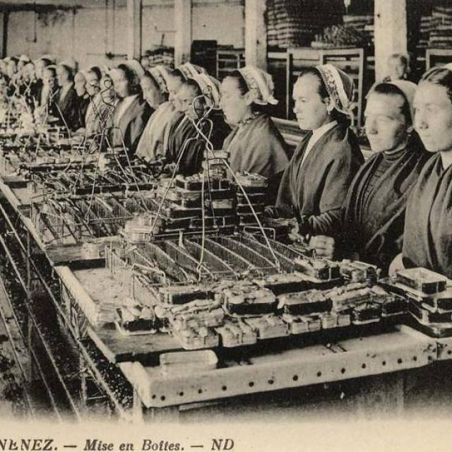 travail-usine-mise-en-boite-phototheque-dz.jpg