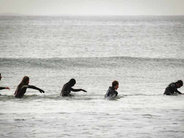 Marche aquatique en Baie de Douarnenez